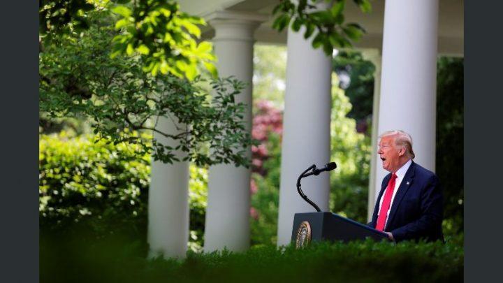 Aumentan los desacuerdos entre Trump y OMS