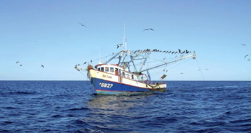 Costa Rica comprometida con pescadores y comunidades costeras y la pesca sostenible