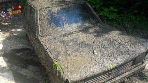 Hallan carro robado en pantano luego de 38 años